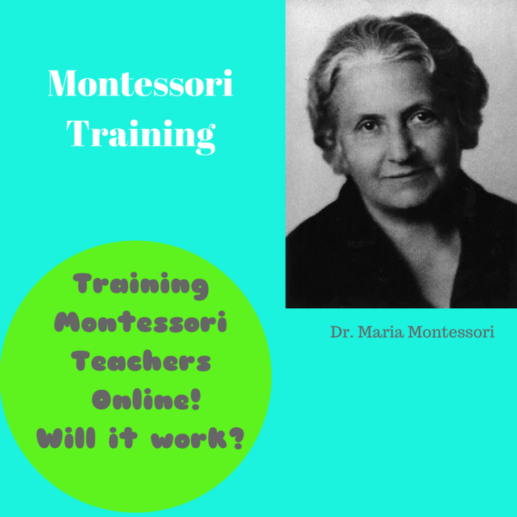 MontessoriTraining blog 1