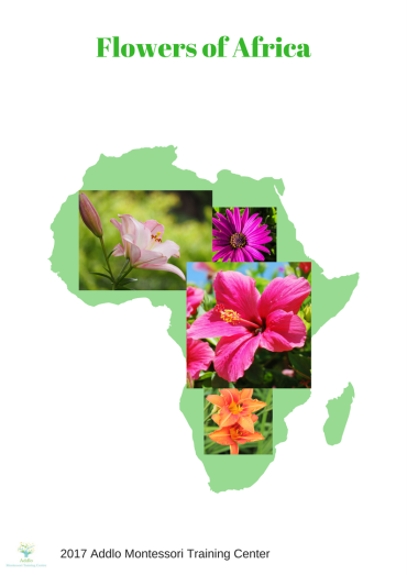 Flowers of Africa (3)
